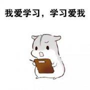 南京五年制专转本医科大学康达学院护理学有辅导班吗